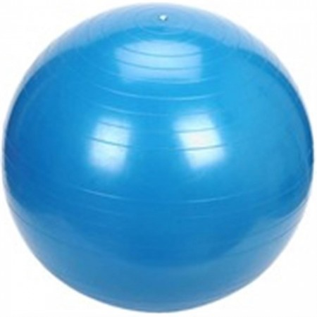 POWER GYMNASTIC BALL 55